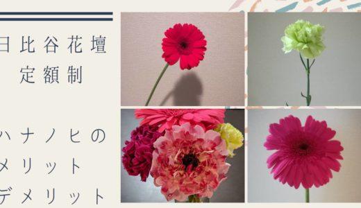 【口コミ】日比谷花壇の定額制サブスク「ハナノヒ」を利用するメリット・デメリット